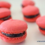 Macarons ai Lamponi 4 - Diana Grandin Foodblog
